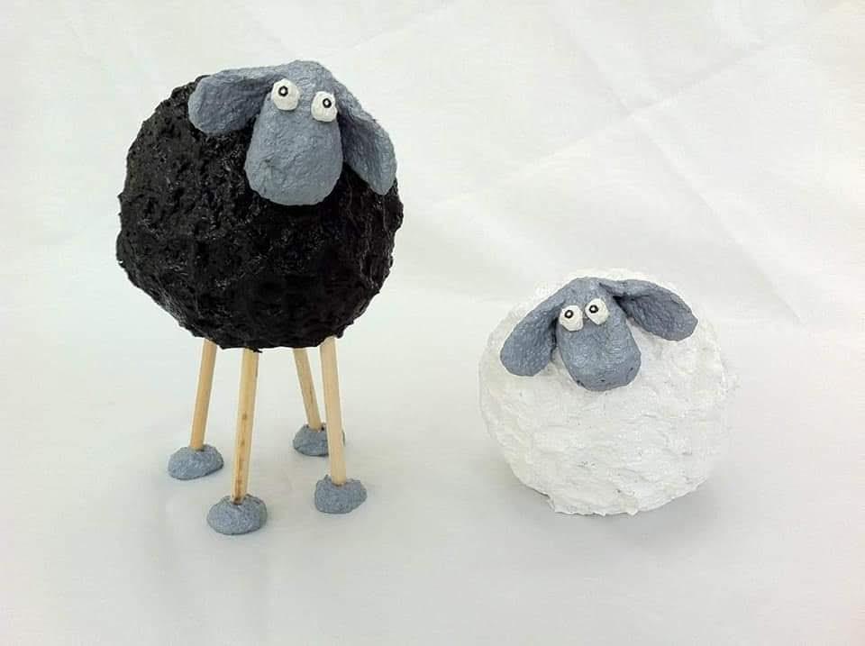 כבשים שחורלבן
